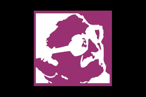 Logo Instituto Politécnico y Artístico Universitario